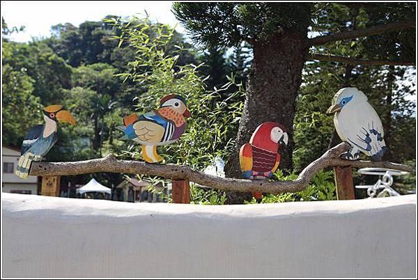 森林鳥花園 (2)