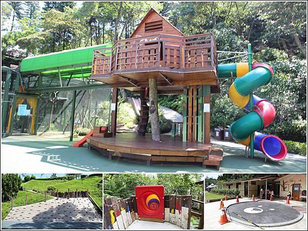 森林鳥花園 (7)