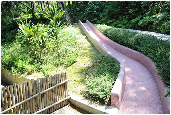 森林鳥花園 (41)