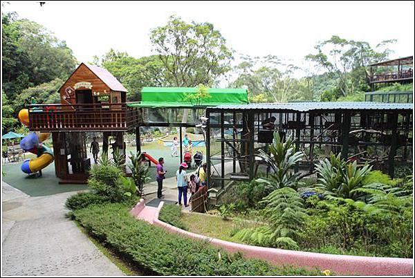 森林鳥花園 (42)