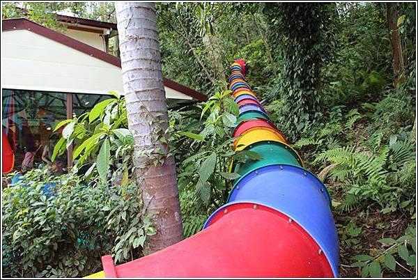森林鳥花園 (85)