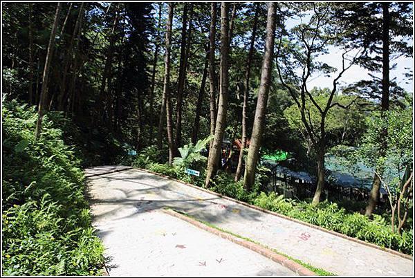 森林鳥花園 (93)