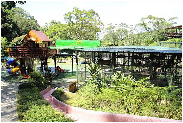 森林鳥花園 (69)
