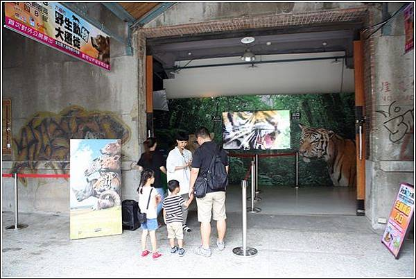 華山藝文特區 (7)