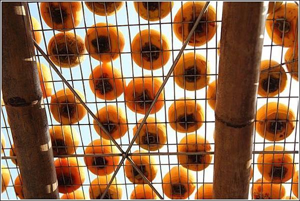 味衛佳柿餅觀光工廠 (18)