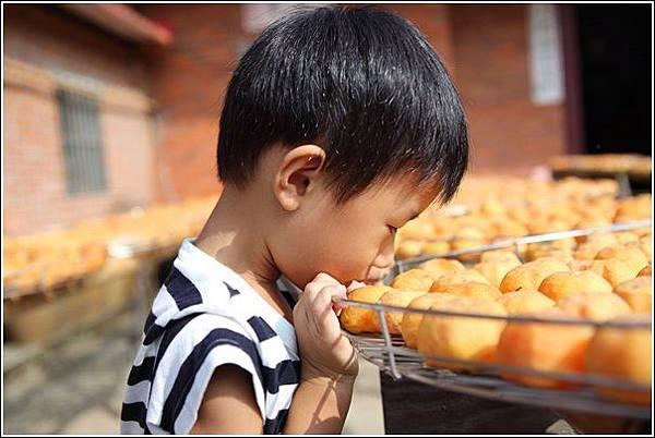 味衛佳柿餅觀光工廠 (45)