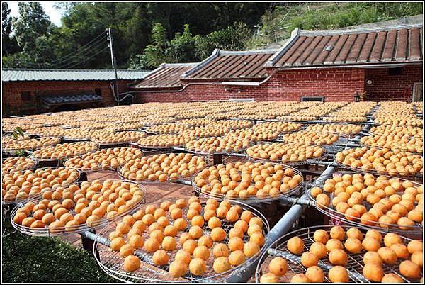金漢柿餅 (9)