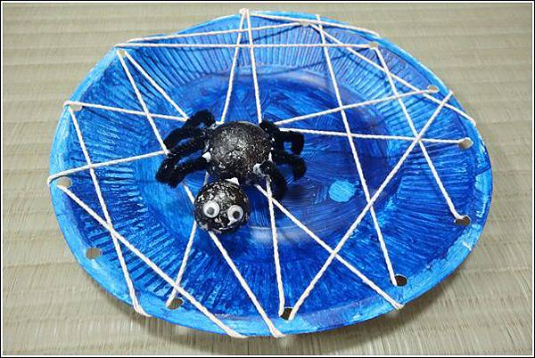 紙盤蜘蛛 (20)