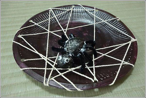 紙盤蜘蛛 (21)