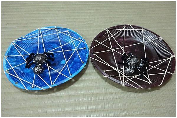 紙盤蜘蛛 (22)
