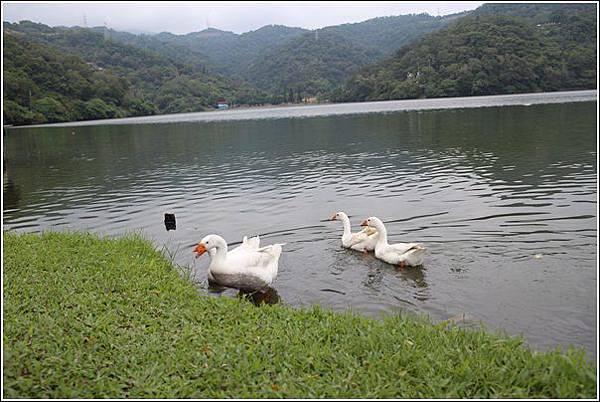 龍潭湖風景區 (20)