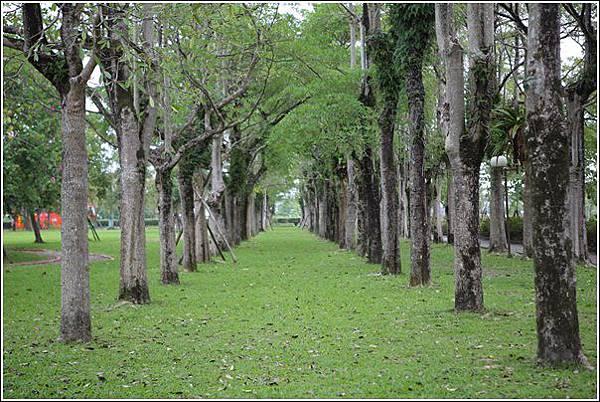 宜蘭運動公園 (40)
