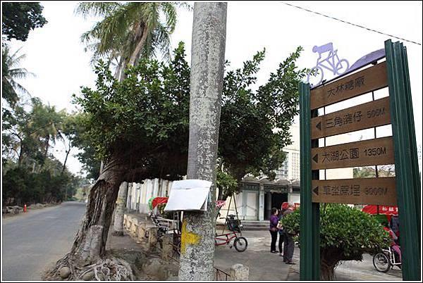 大林自行車道 (5)