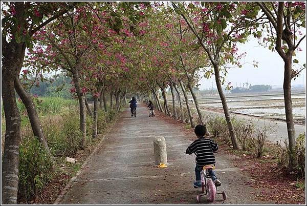 大林自行車道 (25)