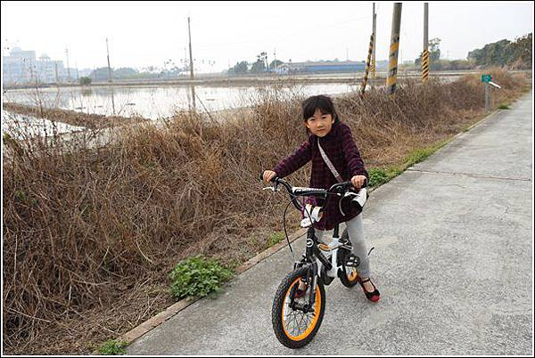 大林自行車道 (28)