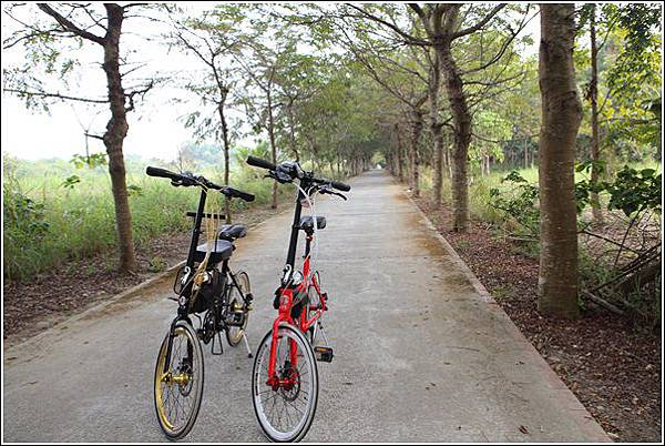 大林自行車道 (37)