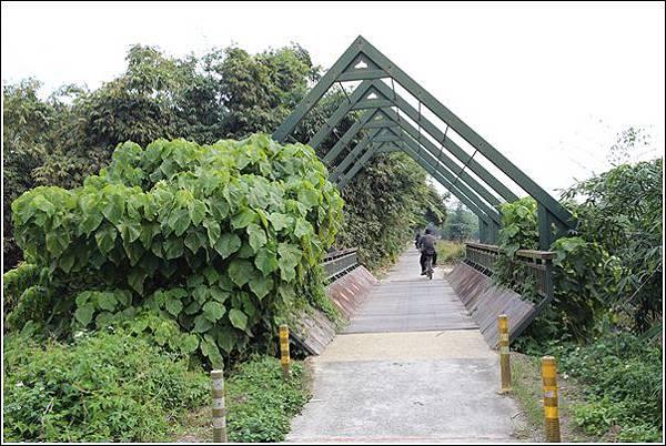 大林自行車道 (55)
