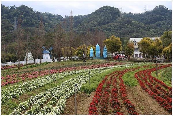 富田花園農場 (3)