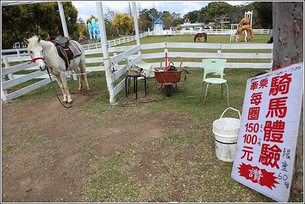 富田花園農場 (50)