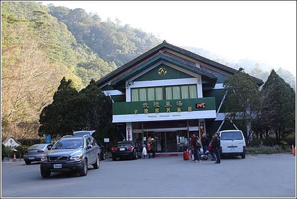 武陵農場櫻花季 (49)