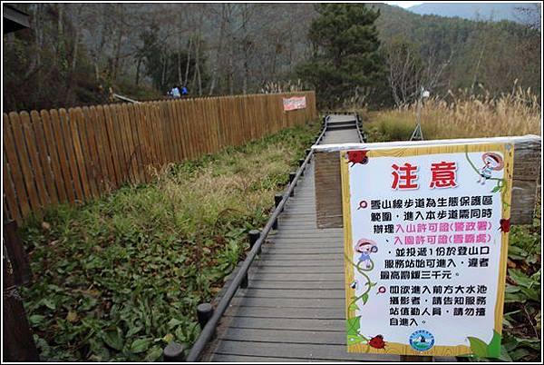 武陵農場櫻花季 (57)