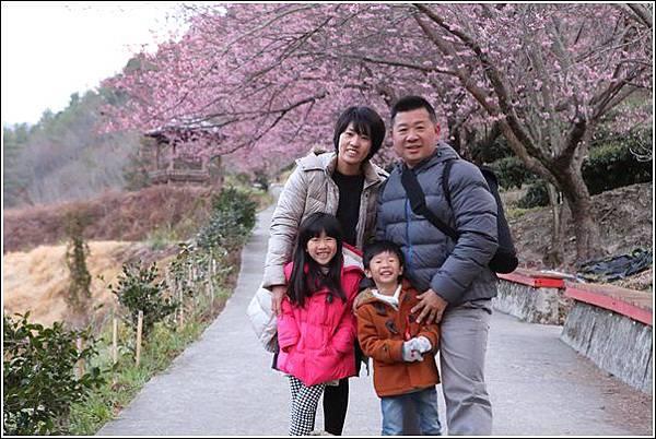 武陵農場櫻花季 (70)