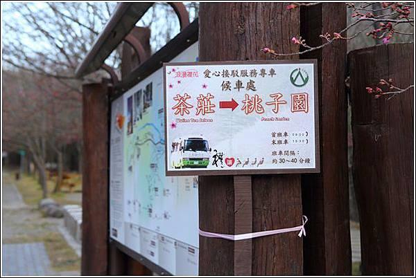 武陵農場櫻花季 (84)