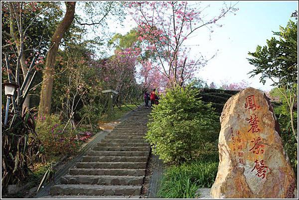 鳳凰自然教育園區 (3)