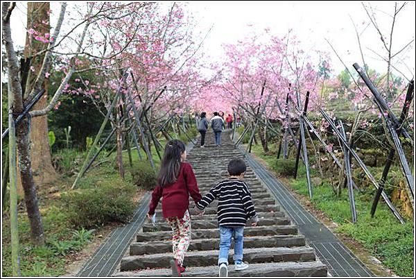 鳳凰自然教育園區 (4)