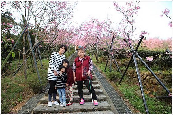 鳳凰自然教育園區 (7)