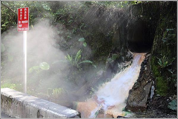太平山國家森林遊樂區 (7)