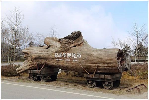 太平山國家森林遊樂區 (37)