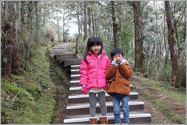 太平山國家森林遊樂區 (44)