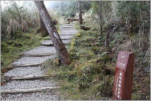 太平山國家森林遊樂區 (45)