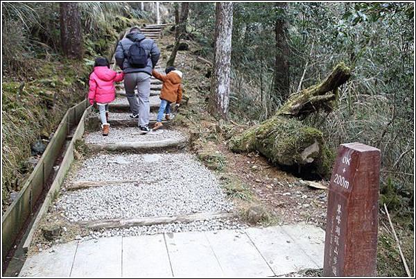 太平山國家森林遊樂區 (46)