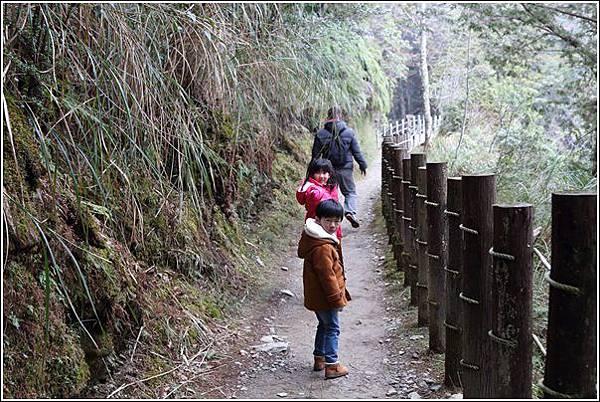 太平山國家森林遊樂區 (47)