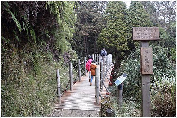 太平山國家森林遊樂區 (48)