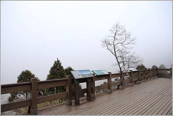 太平山國家森林遊樂區 (57)