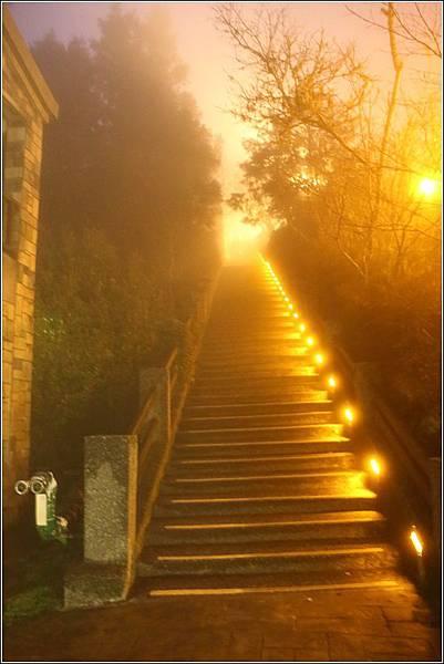 太平山國家森林遊樂區 (74)