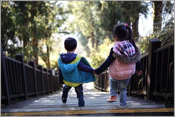 太平山國家森林遊樂區 (91)
