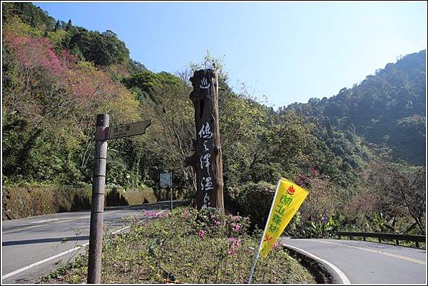 太平山國家森林遊樂區(104)