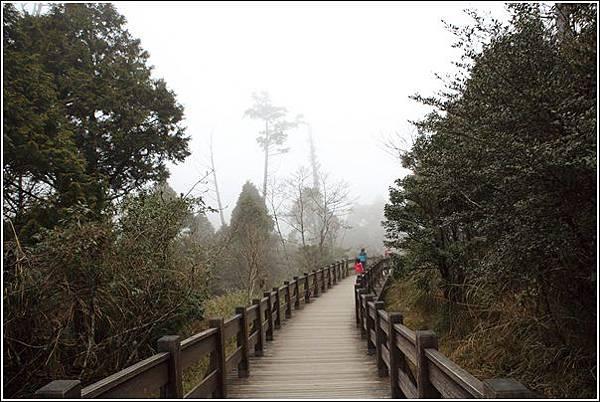 太平山國家森林遊樂區(106)