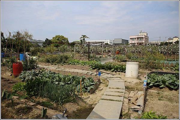 赤腳Y生態農莊 (13)