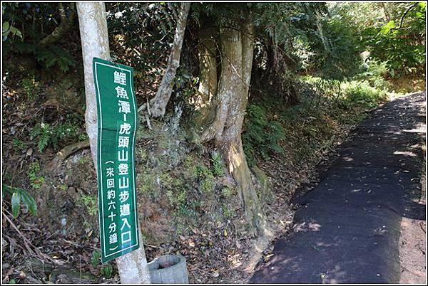 鯉魚潭風景區 (9)