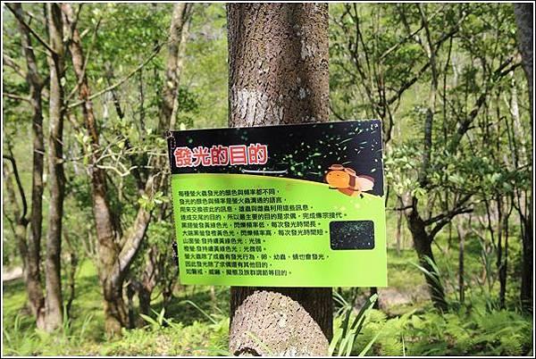 東勢林場 (43)