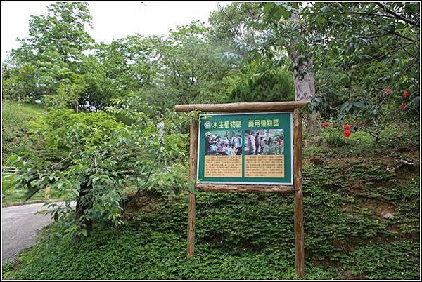 東勢林場 (115)