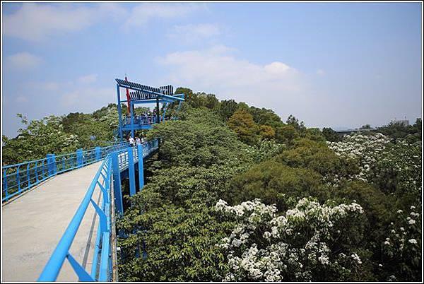 九湖天空步道 (21)