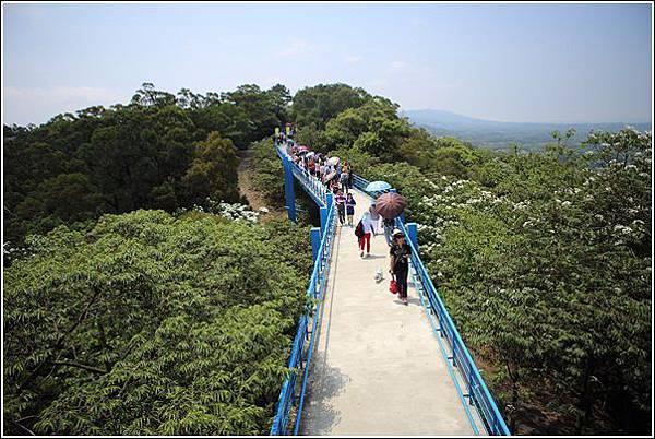 九湖天空步道 (25)