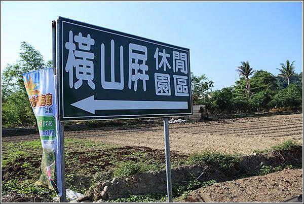 橫山屏金針花海 (2)