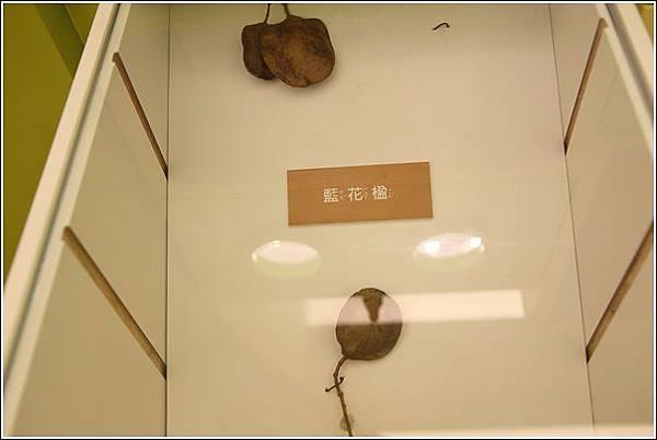 小藝樹空間 (37)